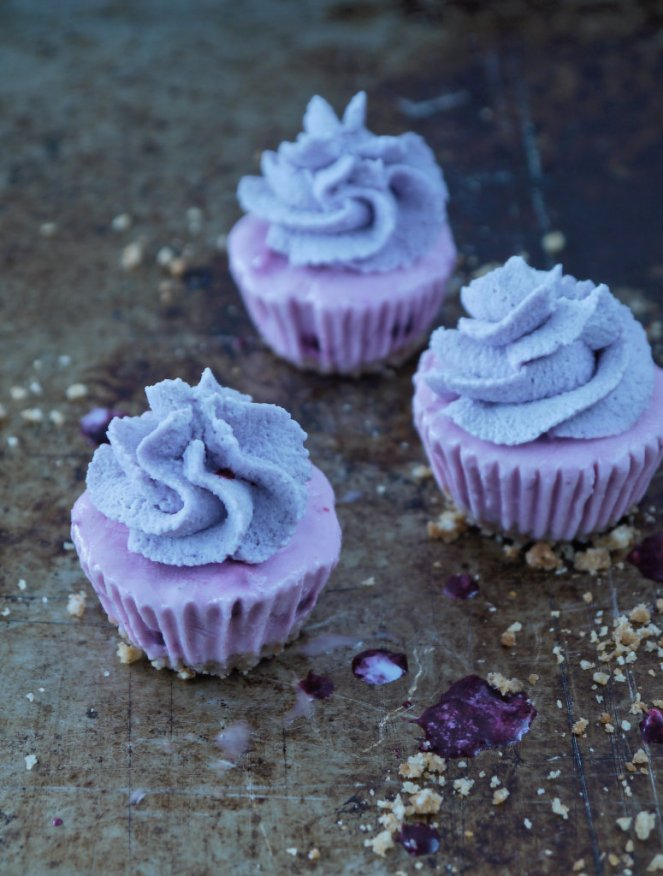 Frozen Yogurt Cupcakes 01