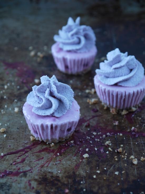 Frozen Yogurt Cupcakes 02